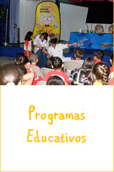 programas educativos recreacionista animador